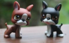 Littlest Pet Shop Lot of Two Boston Terriers 63 and 83 | eBay