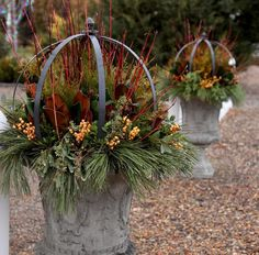 I love these urns so much! Source by GardenAnswer Outdoor Christmas Planters, Christmas Urns, Outdoor Topiary, Outdoor Christmas Decorations, Christmas Wreaths, Christmas Time, Christmas Ideas, Merry Christmas, Xmas