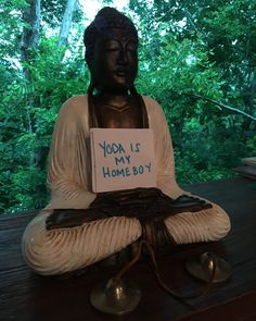 Makes sense that Yoda and Buddha are homeboys. They're both prepare wise homies. Who is your guru?Who is your maestro?Where are your teachers? Learn more about my gurus teachers and inspirations on my website. http://bit.ly/2tSji1Z