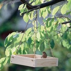 Bird Feeder - perfect for those Melissa & Doug wooden trays that so many of their toys come packaged in!