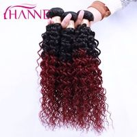 HANNE Unprocessed Ombre Hair Extension Peruvian Virgin Hair 3pcs kinky curly virgin hair Peruvian Curly Hair afro kinky curly
