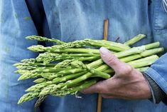 Growing Asparagus Made Easy http://feedproxy.google.com/~r/TheAlmanacBlog/~3/Q3zRfsgCCjQ/