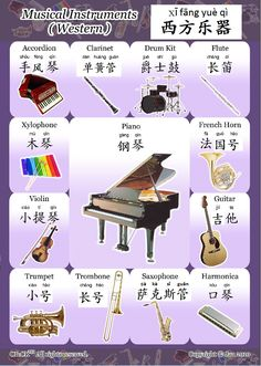 西方乐器 western musical instruments