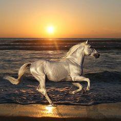光輝く美しいさま by Unravel