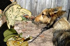 Bobik the dog vs Bankers #dogs #funny #donations