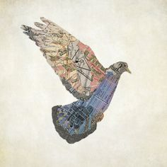 Le Pigeon de Paris. $50.00, via Etsy.by jason laferra (ny)from historical maps of paris