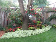 Adorable Flower Beds Ideas Around Trees To Beautify Your Yard 05 Garden Yard Ideas, Garden Spaces, Lawn And Garden, Landscaping Around Trees, Front Yard Landscaping, Landscaping Ideas, Landscaping In The Shade, Inexpensive Landscaping, Mulch Landscaping