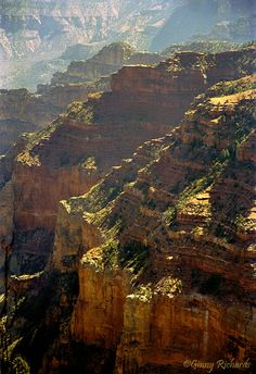 Grand Canyon, Colorado from the North Kaibab Trail. http://www.pbase.com/ginnyr/image/37324813