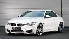 #BMW #F83 #M4 #Convertible #White #Angel