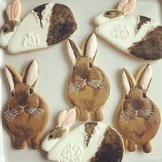 Rabbit cookies - not sure I could eat these, but WOW!
