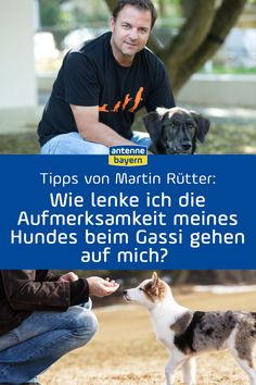 Martin Rütter live at ANTENNE BAYERN: The answers to listen to - Professional dog Martin Rütter answers your questions about human-dog relationships, training, upb - Canaan Dog, Frozen Dog, Easiest Dogs To Train, Cat Dog, Dog Training Tips, Dog Walking, Dog Care, About Me Blog, Relationship