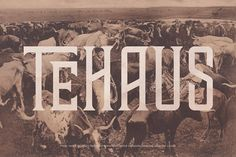 TEHAUS Typeface by Brody Vercher on @creativemarket