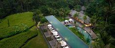 Ubus hat wahrscheinlich die größte Dichte an herausragende Boutique Hotels auf Bali. Welches ist das Beste? Wir stellen Euch zehn empfehlenswerte Hotels vor