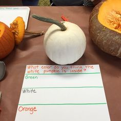 I set out some areas to look closer at pumpkins, gourds and apples since these are things we are seeing a lot of at this time of year! The k...