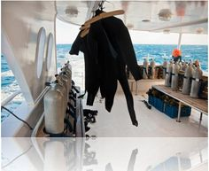 Going on a SCUBA trip this holiday, get DAN cover and stay safe | Visit us @ http://divelife.co.za