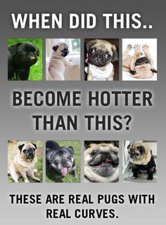 Real pugs with real curves