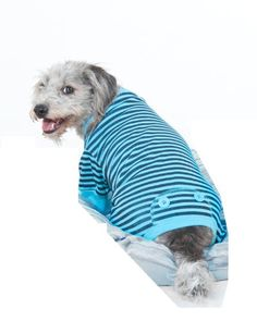 Fashion Pet Blue STRIPED PJS Extra Extra Small * Details can be found by clicking on the image.