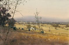 Summer Pasture, Wagga Wagga by Joseph Zbukvic - Greenhouse Gallery of Fine Art