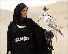 Arabia Falcon