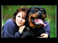 Rottweiler the Best Dog... Nothing more to be said - I've had Rottweilers for the last 23 years.
