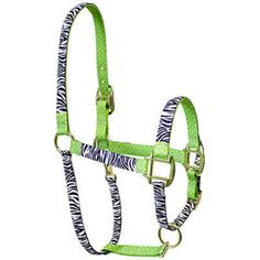 Zebra on Green Polka Horse Halter, LARGE w/ matching Lime Green lead rope