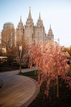 Spring on Temple Square