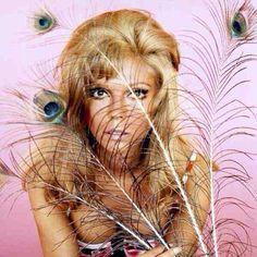 Nancy Sinatra. 60s Icons, Nancy Sinatra, Sixties Fashion, Stevie Nicks, Old Hollywood, Got Married, Joy, Instagram, Feathers