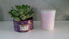 Idee DIY: transformer une boîte de thé kusmi tea en un pot pour une petite plante