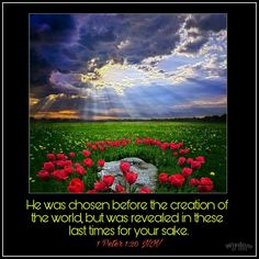 1 Peter 1:20 NIV He was chosen before the creation of the world,  but was revealed in these last times for your sake.