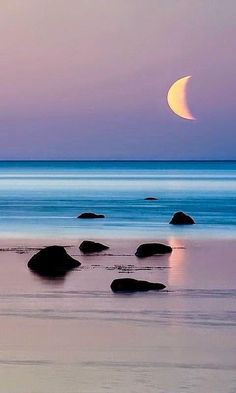 twilight ; shoreline ; crescent moon ; coast ; beach