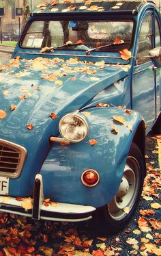 #Rainy #autumn, very Parisian style, like the #2CV you see beneath the leaves.