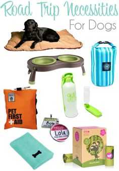 Road Trip Necessities For Dogs | http://www.thelazypitbull.com/2015/05/road-trip-necessities-for-dogs Dog Accessories, For Dogs, Dogs And Puppies, Travel Supplies, Road Trip With Dog, Maltipoo, Puppy Supplies, Hiking Essentials, Pet Travel