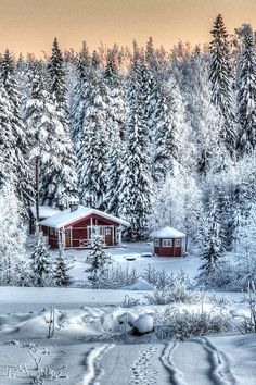House and barbecue hut in the snow - they look just like our favourite winter holiday house in Sweden