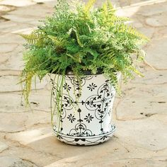 Audrey Planter Pots And Urn - Grandin Road
