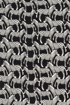 Timeless Treasures Into The Wild Zebras All Over Black