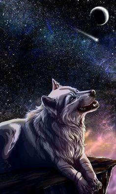 My choice by WolfRoad.deviantart.com on @deviantART