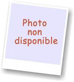 code promo Les miniatures de didange