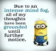 23 Minions to Crack You Up Are you still checking? Don't expect takeoff anytim... - 23, anytim, checking, Crack, Dont, expect, funny minion quotes, Minions, Quotes, takeoff - Minion-Quotes.com