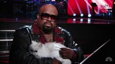 Cee Lo and the Fancy Feast cat. Hahaaa