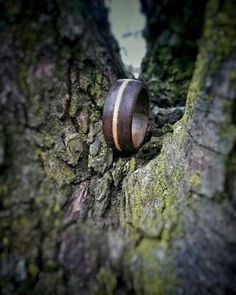 Walnut woodring