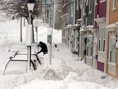 After snow storm in Newfoundland, Canada Newfoundland Canada, Newfoundland And Labrador, Winter Magic, Winter Storm, I Love Winter, Winter Wonder, Winter Time, Terra Nova, Atlantic Canada