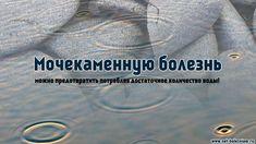 """Элементарным средством от очищения почек является простая питьевая вода. Она не содержит агрессивные химические вещества, не является токсичной, не содержит калорий.  Роль воды заключается в том, что она """"смывает"""" или """"даёт ход"""" появившимся камням в мочевыделительной системе.   #камни #камнивпочках #мочекаменнаяболезнь #почки #вода #кальций #оксалаты #магний #здоровье #медицина #netbolezniamru"""