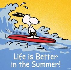 I dont like to swim or surf, but Snoopy...yes!