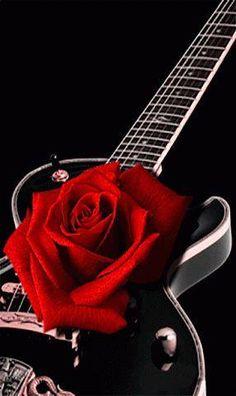 Red rose on guitar Eckhart Tolle Meditation, Beautiful Roses, Beautiful Flowers, Beautiful Gif, Pretty Roses, Beautiful Tattoos, Foto Gif, Single Rose, Rose Wallpaper