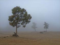 Baikal. Fog