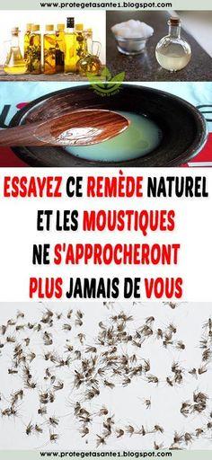 Essayez ce remède naturel et les moustiques ne s'approcheront plus jamais de vous Plus Jamais, Women's Fashion, Diy, Green Clay, Mosquitoes, Natural Remedies, Do It Yourself, Fashion Women, Bricolage