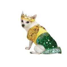 Zack  Zoey Lil Furrmaid Dog Costume XSmall Gold >>> Check out this great product.