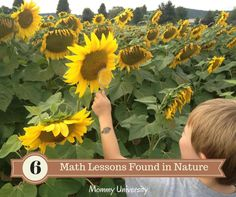 6 EASY MATH LESSONS FOUND IN NATURE by Mommy University at www.mommyuniversi... #gardeningwithkids