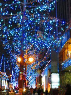 Midosuji Winter illumination 2012.  http://osaka-chushin.jp/  https://www.facebook.com/TheHeartofOsaka