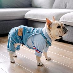 Denim Dog Coat Autumn Winter Pets Dogs Clothing Fat Dog Clothes Fashion Pet Clothes French Bulldog P French Bulldog Clothes, French Bulldog Puppies, French Bulldogs, French Bulldog Costume, Pug Puppies, Style Salopette, Dog Overalls, Fat Dogs, Dog Accessories